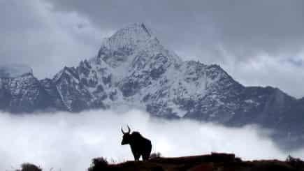 Everest (8848 m)
