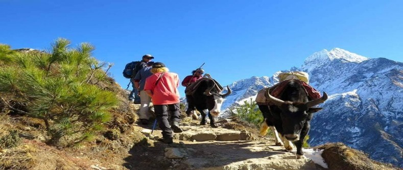 Everest: Three Passes Trek