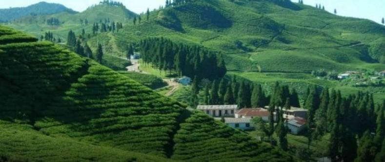 Eastern Nepal Trip with Darjeeling